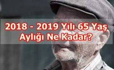 65 Yaş Aylığı Ne Kadar 2018 Oldu?