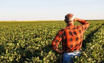 2019 Çiftçi Nasıl Emekli Olur, Şartları Nelerdir?