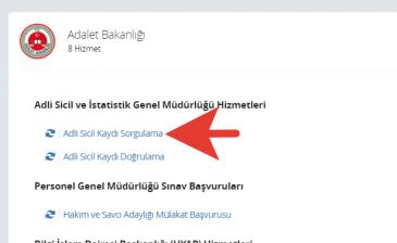 E-DEVLET SABIKA KAYDI